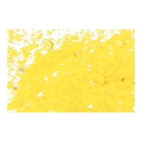 051 - Giallo scuro - Jaxon