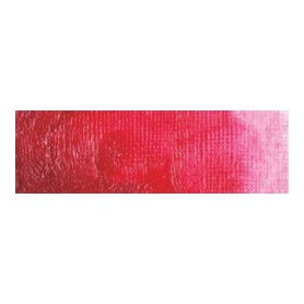 018 - Rosa permanente