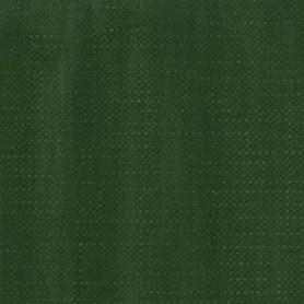 020 - Terra verde