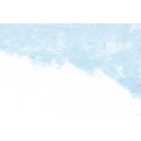 029 - Blu di Prussia 294