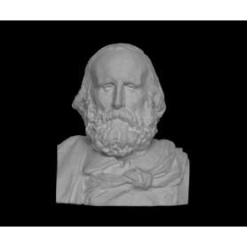 Garibaldi - Busto - 110e