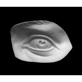 Occhio - Particolare anatomico