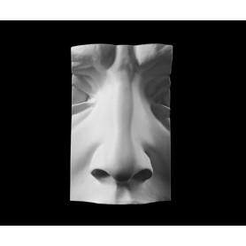 Naso - Particolare anatomico