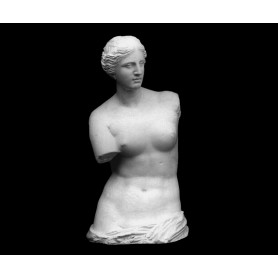 Venere di Milo - torso - 127a