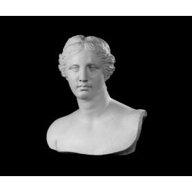 Venere di Milo - Busto - 128a