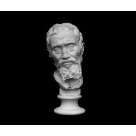 Ritratto di Michelangelo - Testa - 148c