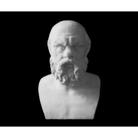 Socrate - Busto